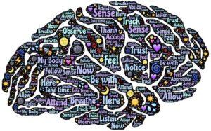 meditation-brain-1000062__340